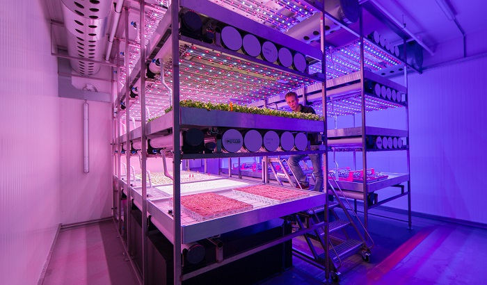 Follow us on a new journey combining floriculture and vertical farming