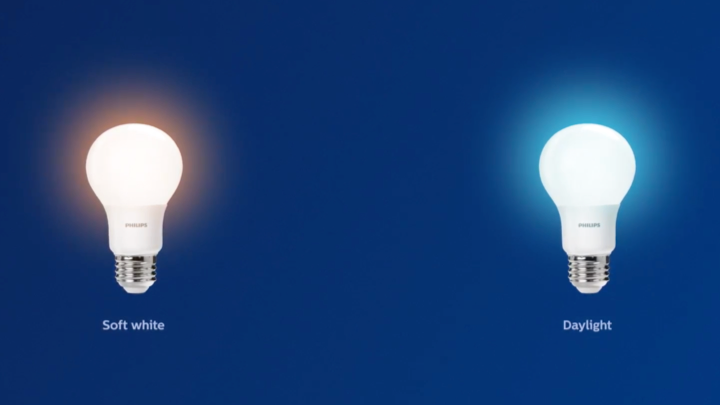 Comparing a soft white LED bulb and a bright daylight LED bulb